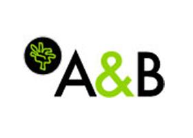 Albasini & Berkhout